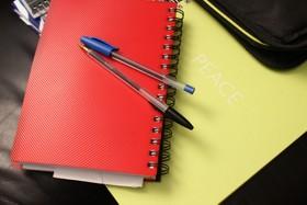 蓝色和黑色的圆珠笔红手簿